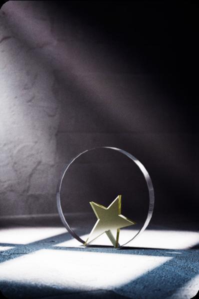 Plakieta z gwiazdą